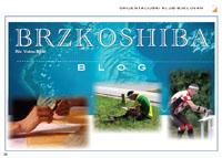 BRZKOSHIBA